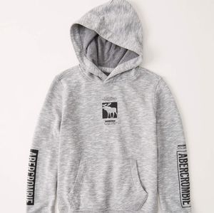 Abercrombie 11/12 logo hoodie